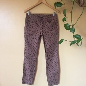 Splendid polka dot cotton straight leg pants // 2